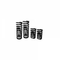 """Пружины подвески ( Лифт Кит 5"""" ) для Can-Am Maverick X3 XRS CLKCMX3-00"""