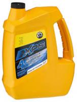 Масло синтетическое XPS для 4-тактных двигателей 293600155, 293600154