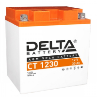 Аккумулятор квадроцикла Delta CT1230 YIX30L-BS
