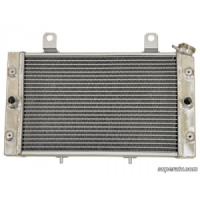Радиатор для квадроцикла Yamaha Rhino 700 5B4-E2461-00-00 HDR-P-RHI