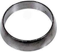 Уплотнительное кольцо глушителя Polaris SM-02038, 3610047