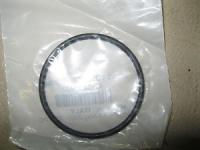 Уплотнительное кольцо BRP 420631087
